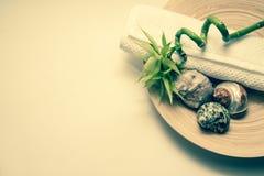 Раковина с бамбуковой плитой и белым космосом экземпляра Стоковая Фотография RF