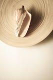 Раковина с бамбуковой плитой и белым космосом экземпляра Стоковое Изображение