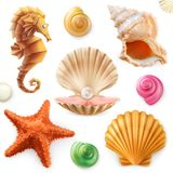 Раковина, улитка, наяда, морская звёзда, лошадь моря комплект иконы 3d иллюстрация вектора