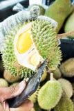 Раковина дуриана отверстия дровосеком, который нужно увидеть внутрь Стоковое фото RF
