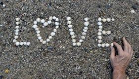 Раковины влюбленности Стоковая Фотография