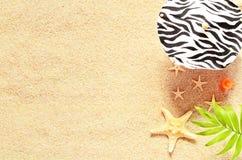 Раковины и ладонь моря на предпосылке песка пристаньте прибой к берегу лета камней песка Кипра свободного полета среднеземноморск Стоковое Изображение RF