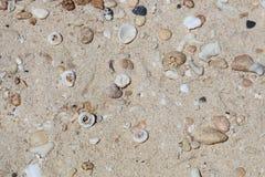 Раковины и камешки на пляже, острове Boracay, Филиппинах Стоковое Изображение