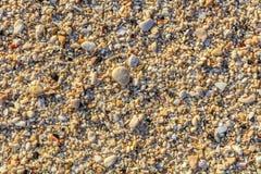 Раковины и камешки на пляже, острове Boracay, Филиппинах Стоковая Фотография RF
