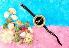 Раковины и компас моря Стоковые Изображения RF