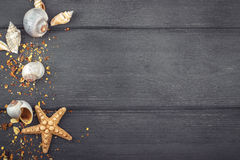 Раковины и морские звёзды на голубой деревянной предпосылке Взгляд сверху Стоковая Фотография