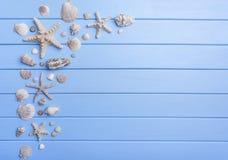Раковины и морские звёзды на голубых досках Стоковые Изображения RF
