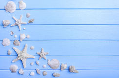 Раковины и морские звёзды на голубых досках Стоковые Изображения