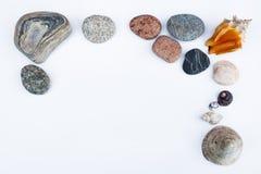 раковины камушков рамки Стоковые Изображения