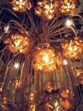Раковины кокоса электрических ламп Стоковая Фотография RF