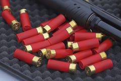 Раковины корокоствольного оружия Стоковое фото RF