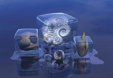раковины льда блока Стоковые Фото