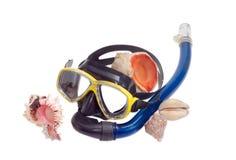 Раковины маски и моря подныривания на светлой предпосылке Стоковые Фотографии RF