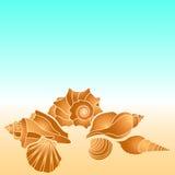Раковины моря вектора Вручите морские звёзды краски, scallop, раковину, раковину, наяду Элементы дизайна летних отпусков иллюстрация вектора