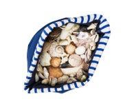 Раковины моря в голубой и белой сумке матроса Стоковое Фото