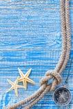 Раковины моря и морская веревочка Стоковая Фотография RF