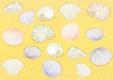 раковины моря мидии иллюстрация вектора