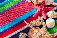 Раковины моря на пляжном полотенце Стоковая Фотография