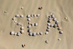 раковины моря песка волейбол лета пляжа шарика предпосылки красивейший пустой Взгляд сверху Стоковая Фотография