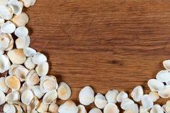 раковины моря песка волейбол лета пляжа шарика предпосылки красивейший пустой Взгляд сверху Seashells на деревянном столе - напом Стоковое Фото