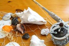 раковины моря рыболовной удочки стоковая фотография rf