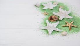 раковины моря соли стоковые изображения