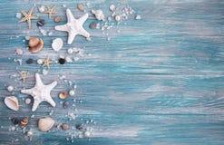 раковины моря соли стоковая фотография rf