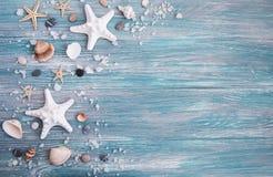 раковины моря соли стоковые фото