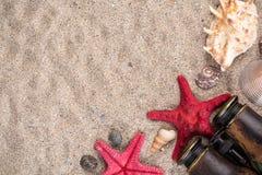 Раковины моря с 2 красными морскими звёздами и бинокулярное Стоковые Фотографии RF