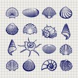Раковины моря эскиза ручки шарика бесплатная иллюстрация