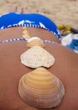 Раковины на задней части ` s девушки Стоковая Фотография RF