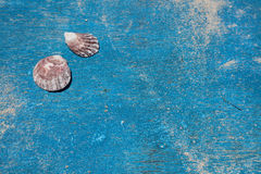 Раковины на палубе старой деревянной шлюпки, острова Boracay, Филиппин Стоковое Изображение RF