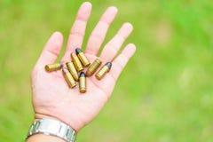 Раковины руки используемые удерживанием на зеленой предпосылке Стоковое Фото