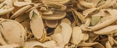 Раковины семени тыквы Стоковое Фото