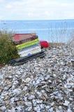 Раковины устрицы и пустой пляж Whitstable контейнеров стоковое изображение rf