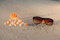 раковины цвета на песчаном пляже с желтыми солнечными очками Стоковые Фото