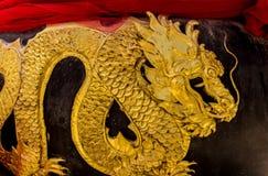 дракон золотистый Стоковое Изображение RF