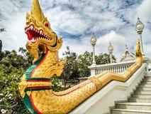 дракон золотистый Стоковые Фото