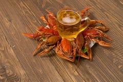 Ракы и кружка пива на плите Стоковые Фото