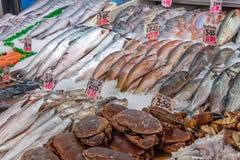 Ракы и рыбы для продажи стоковые фото
