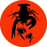 Ракы обозначают, силуэт раков, значок раков, знак омара, символ раков, омар также вектор иллюстрации притяжки corel Стоковые Изображения RF