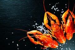 Ракы Ракы кипеть красным цветом с травами Стоковые Фото