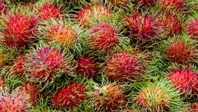 Рамазан - рамбутан тропических плодоовощей Стоковые Изображения