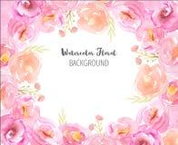 Рамка акварели с розовыми цветками и листьями Стоковое Изображение RF