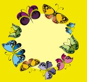 Рамка бабочек Стоковая Фотография RF