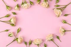 Рамка бежевых красивых мини роз на яркой розовой предпосылке праздники установьте текст Взгляд сверху стоковое фото