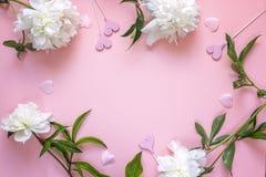 Рамка белых пионов и декоративных сердец на розовом backgrou Стоковое Изображение