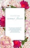 Рамка вектора винтажная флористическая с цветками лета Стоковое Изображение RF