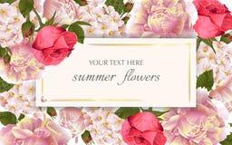 Рамка вектора винтажная флористическая с цветками лета Стоковая Фотография RF