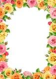 Рамка вектора с красочными розами Стоковые Изображения